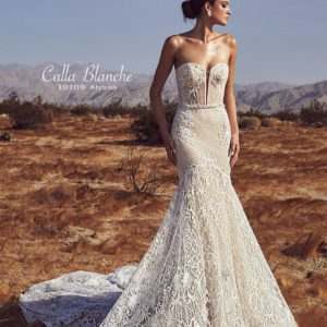 Spring 2019 collection, New Collection 2019 ,lace tulle,haute couture,illusion,bridal,wedding,wedding gown,woodbridge,vaughan,mississauga,toronto,gta,ontario,canada,USA,sayyestothedress